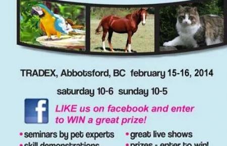 Pet Lovers Fair